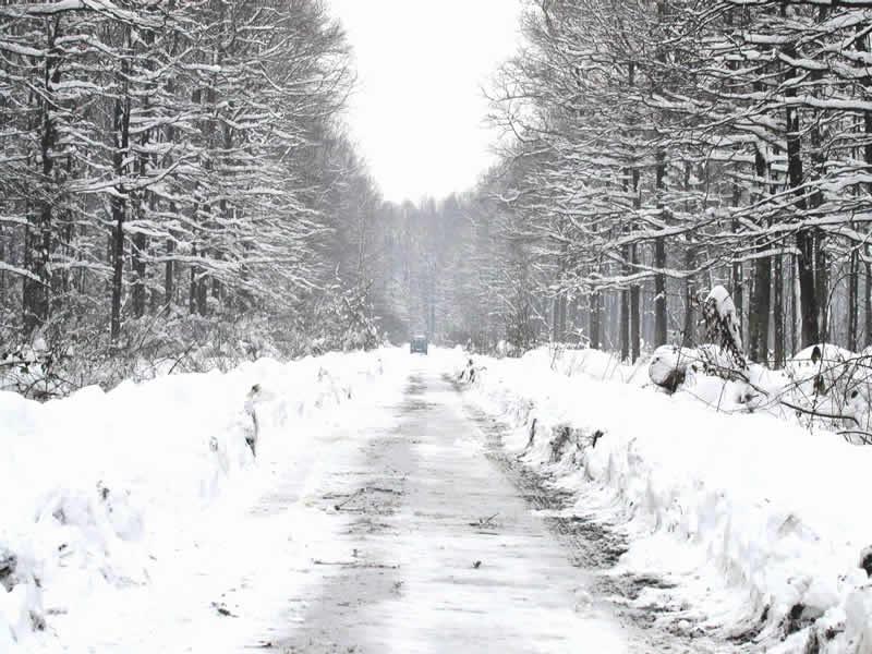 snijeg_800